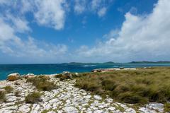 rocky limestone coastline at devil's bridge antigua - stock photo