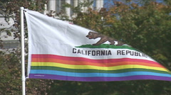 Gay Pride - State of California  Stock Footage