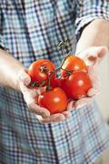 Germany, Berlin, Senior man holding tomatoes Stock Photos
