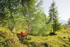 Stock Photo of Austria, Salzburg County, Young woman leaning on tree in alpine meadow