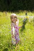 Austria, Salzburg County, Girl picking flowers in summer meadow, smiling, Stock Photos