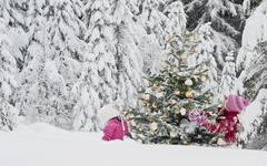 Austria, Salzburg County, Girls watching christmas tree in snow - stock photo