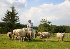 Germany, Bavaria, Mature woman caressing sheep on farm Stock Photos