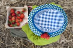 Germany, Saxony, Boy with blue hat holding box of strawberries Stock Photos