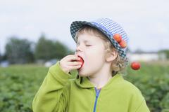 Germany, Saxony, Boy eating strawberry in field, close up Stock Photos
