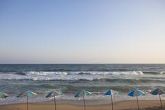 Egypt, Row of sunshades on coast Stock Photos