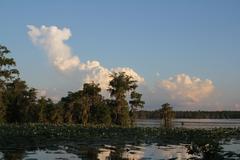 Clouds over bayouat sunset Stock Photos