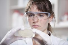 Germany, Bavaria, Munich, Scientist with petri dish in laboratory Stock Photos