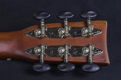 guitar handle - stock photo