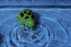 splash bath toy - stock photo