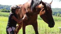 girl brushing her horse - stock footage