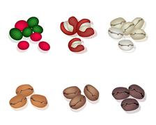 Stock Illustration of Various Kind of Coffee Beans on White Background