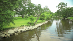 Bayou in Louisiana Stock Footage