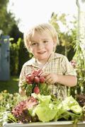 Germany, Bavaria, Boy holding bundle of radish, smiling Stock Photos