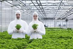 Germany, Bavaria, Munich, Scientists in greenhouse with parsley plant - stock photo