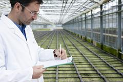 Germany, Bavaria, Munich, Scientist in greenhouse examining bed with seedlings - stock photo