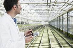 Stock Photo of Germany, Bavaria, Munich, Scientist in greenhouse with digital tablet examining