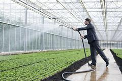 Germany, Bavaria, Munich, Mature man in greenhouse watering seedlings - stock photo