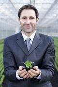 Stock Photo of Germany, Bavaria, Munich, Mature man in greenhouse with corn salad