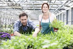 Germany, Bavaria, Munich, Mature man and woman standing with rocket plant in - stock photo