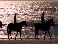 Beach horse-riding Stock Footage