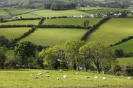 Stock Photo of United Kingdom, Northern Ireland, County Antrim, View of fields landscape