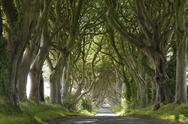 Stock Photo of United Kingdom, Northern Ireland, County Antrim, View of empty road through
