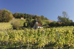 Germany, Bavaria, View of Anne Chapel in vineyard Stock Photos