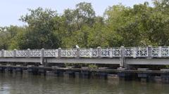 Man bicycle ringing riverside park riverwalk Stock Footage