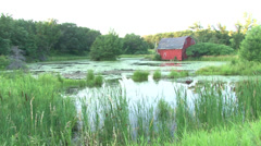 Red Barn in the Woods 2 Stock Footage