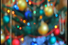 Christmas pine tree with lights defocused (New Year Tree) ., click for HD Stock Footage