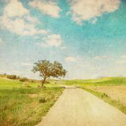 Grunge kuva maaseutu tie Piirros