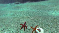 Diver Exploring The Ocean Floor Stock Footage