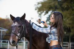 USA, Texas, Cowgirl brushing horse Stock Photos