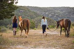 USA, Texas, Sisters kävely Quarterhorses kohteen vuori Kuvituskuvat