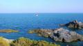 Peaceful picturesque seascape. HD Footage