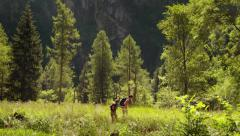 4of12 Young people hiking and trekking on mountain Stock Footage