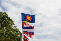 Association of southeast asian nations flag Stock Photos