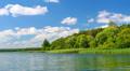 Summer lake landscape Footage