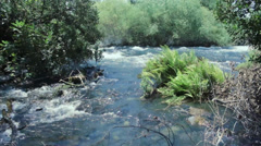 Dan Water Stream in Summer Days Stock Footage
