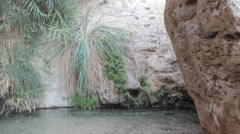 David Fall in David Stream Water and Cave, Judea, Israel Stock Footage