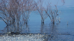 Sea of Galilee in Calm Days of Summer Stock Footage