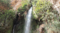 David Fall in David Stream Water, Judea, Israel - stock footage