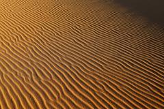 Algeria, View of sand dunes at Erg Mehejibad - stock photo