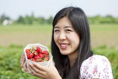 Germany, Bavaria, Young Japanese woman picking strawberries in field Stock Photos