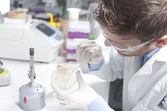 Germany, Young scientist examining bacteria in petri desh - stock photo