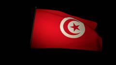 Flag Tunisia 01 Stock Footage