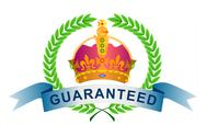 Crown in olive branch-guaranteed Stock Illustration