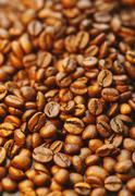 Germany, Coffeebeans, close up - stock photo