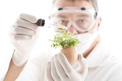 Scientist adding chemical from pipette on cress in egg shell, close up - stock photo